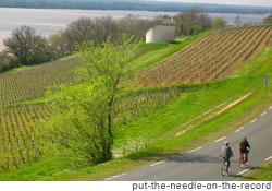 Tourists ride bicycles through wine vineyard in Bordeaux, France