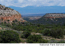 Tsankawi section of New Mexico's Bandelier National Monument, site of severe pinon pine die-offs