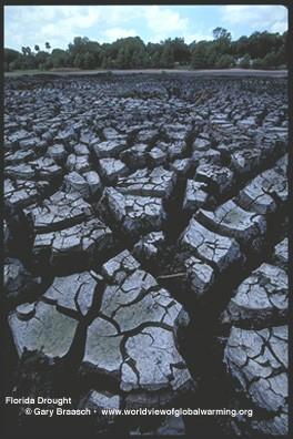 GLOBAL WARMING 10